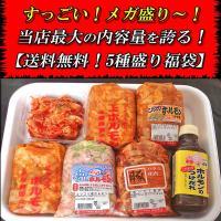 送料無料 人気ホルモン5種盛 福袋 焼肉 ホルモン 父の日 B級グルメ お中元 肉の日|echizennohorumonya