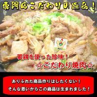珍味!こだわり焼肉 400g「焼肉」「ホルモン」【B級グルメ】お花見にも! echizennohorumonya