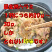 珍味!こだわり焼肉 400g「焼肉」「ホルモン」【B級グルメ】お花見にも! echizennohorumonya 04