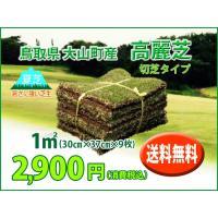 鳥取県 大山町で生産された高麗芝。一般庭園用として人気です!  中葉の芝で公園、ゴルフ場のティー、フ...