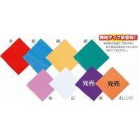 【商品説明】 ■特長 全8色 ■サイズ 約550×550mm ■材質 ポリエステル100%