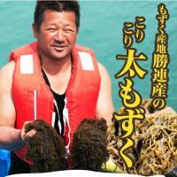 もずく 沖縄県産 メール便送料無料 500g 1000円ポッキリ!セール 名産地「勝連産太もずく」2セット以上ご購入でオマケ!|もずく|※日時指定はできません。