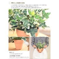 観葉植物 光触媒 造花 ホーランドアイビー グリーン 防菌
