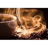コーヒー豆 エクーア シベットコーヒー (ジャコウネココーヒー、コピルアク) 豆 100g eei7 05