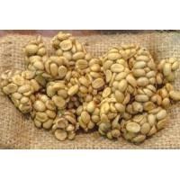 コーヒー豆 エクーア シベットコーヒー (ジャコウネココーヒー、コピルアク) 豆 100g eei7 07
