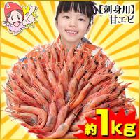 【たっぷり約1kg!】刺身用甘えび(約50~60尾)
