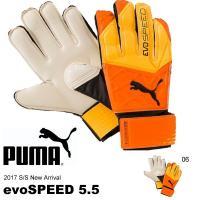 PUMA evoSPEED 5.5 プーマ エヴォスピード 5.5 041281 キッズ ジュニア ...