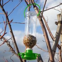 野鳥の愛らしい姿を楽しめるバードフィーダー。ご家庭の空きペットボトルを利用して、手軽に設置できる野鳥...