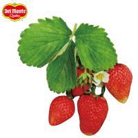 果実糖度で優れる品種、甘くて濃厚な味が特徴です。花芽が連続してできるので果実がたくさん収穫でき、また...
