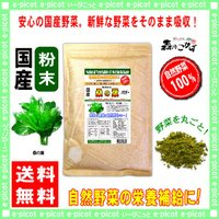 国産 桑の葉 粉末 業務用 500g やさい パウダー 100% 送料無料 森のこかげ 健やかハウス 野菜粉末くわの葉 桑葉 クワの葉