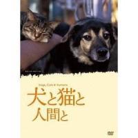 種別:DVD 発売日:2010/06/26 説明:捨てられた犬と猫をめぐる冒険が始まります一人の猫好...