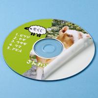CDラベル DVDラベル 内径41mm100枚入り  画像を鮮やかに表現するスーパーファイングレード...