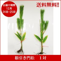「根付く・根を降ろす」という意味合いで根付きの松を使用しており、松1本・図合1本・笹1本の順番で並べ...