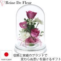 10年間枯れない花!レンデフロールのドライフラワー  花々の一瞬の美しさを少しでも永く楽しんでほしい...
