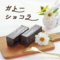 チョコレートケーキ ガトーショコラ (270g)  濃濃厚テイストで抑えた甘さ…クーベルチュールチョ...
