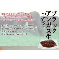 ステーキ丼 ブラックアンガス牛カットステーキ(専用ソース付110g)|fbcreate|04
