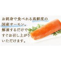 熟成 境港サーモン(100g)銀鮭(鳥取県産)|fbcreate|05