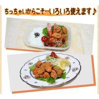 (鶏 とり) (唐揚げ からあげ から揚げ) 一口サイズから揚げちょびチキ(500g)|fbcreate|05