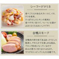 オードブル ディナー セット 送料無料 冷菜グルメセット パーティー 【4〜5人分】|fbcreate|05