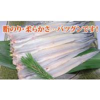 あなご 穴子 フィレ(約50〜60g×10枚)アナゴ|fbcreate|03
