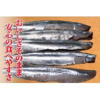 (さんま サンマ 秋刀魚) 骨なしサンマ生切り身(60g×5切れ)|fbcreate|03