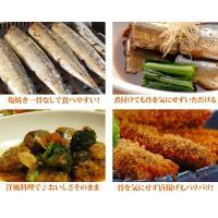 (さんま サンマ 秋刀魚) 骨なしサンマ生切り身(60g×5切れ)|fbcreate|04