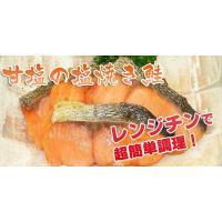 骨なし 鮭 塩焼き (20g鮭×10切れ・焼き魚)|fbcreate|02