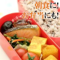 骨なし 鮭 塩焼き (20g鮭×10切れ・焼き魚)|fbcreate|03