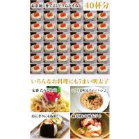 明太子 食品 ギフト(訳あり)たらこ 上切れ子(1kg)送料無料 博多辛子明太子|fbcreate|05