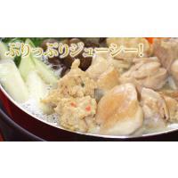 水炊き 国産鶏生つくね(300g)|fbcreate|03