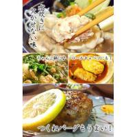 水炊き 国産鶏生つくね(300g)|fbcreate|05