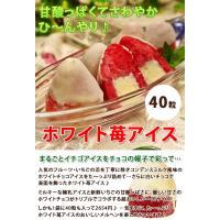 アイスクリーム ホワイト苺アイス(40粒アイスクリーム)|fbcreate|03