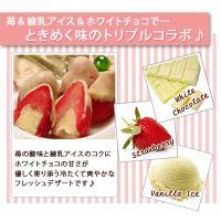 アイスクリーム ホワイト苺アイス(40粒アイスクリーム)|fbcreate|04