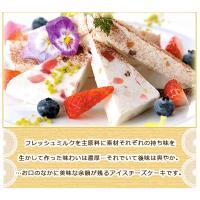 アイスクリーム アイス 送料無料 スイーツ シチリア風 アイスチーズケーキ ギフト (390g)|fbcreate|05