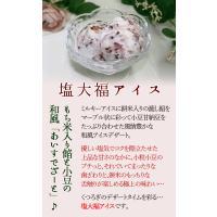 アイスクリーム 業務用 塩大福アイス(2リットル)|fbcreate|03