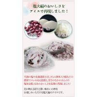アイスクリーム 業務用 塩大福アイス(2リットル)|fbcreate|04