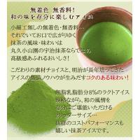 アイスクリーム 業務用 明治 ほろにが宇治抹茶2Lアイス(2リットル)|fbcreate|04