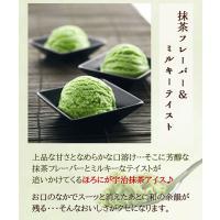 アイスクリーム 業務用 明治 ほろにが宇治抹茶2Lアイス(2リットル)|fbcreate|06