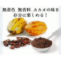 アイスクリーム 業務用 明治 こいあじビターチョコ(2リットル)|fbcreate|05