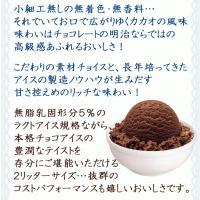 アイスクリーム 業務用 明治 こいあじビターチョコ(2リットル)|fbcreate|06