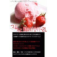 アイスクリーム 業務用 明治 つぶつぶ果肉のストロベリー 2リットル|fbcreate|03