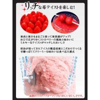 アイスクリーム 業務用 明治 つぶつぶ果肉のストロベリー 2リットル|fbcreate|04