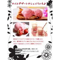 アイスクリーム 業務用 明治 つぶつぶ果肉のストロベリー 2リットル|fbcreate|05
