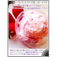 アイスクリーム 業務用 明治 つぶつぶ果肉のストロベリー 2リットル|fbcreate|06