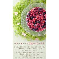 残暑見舞い スイーツ 洋菓子 誕生日ケーキ バースデーケーキ 送料無料 ミックスベリーホールケーキ ギフト(5号/15cm)|fbcreate|04