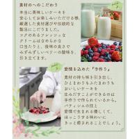 残暑見舞い スイーツ 洋菓子 誕生日ケーキ バースデーケーキ 送料無料 ミックスベリーホールケーキ ギフト(5号/15cm)|fbcreate|05