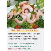 新鮮サラダえび(500g)|fbcreate|02