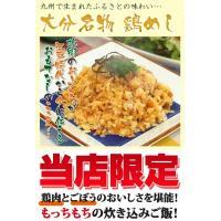 チャーハン・B級グルメ・鶏めし250g|fbcreate|03