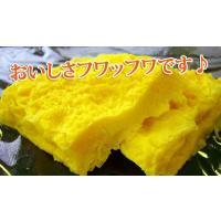 オムレツ お弁当 プレーンオムレツR(30gオムレツ×10個)|fbcreate|03