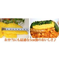 オムレツ お弁当 プレーンオムレツR(30gオムレツ×10個)|fbcreate|04